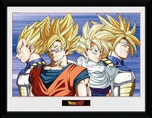 GB Eye poster in lijst Dragonball Z Group 30 x 40 cm