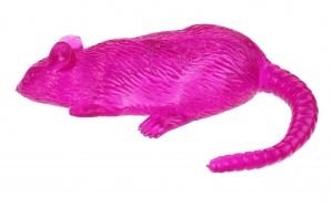 Toi-Toys Flying Rat katapult 20 cm fuchsia