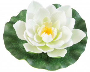 Velda waterlelie Lotus 17 cm foam wit/groen