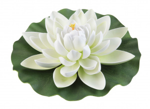 Velda waterlelie Lotus 28 cm foam wit/groen