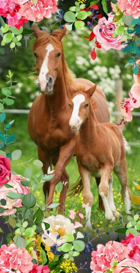 strandlaken Foal 70 x 150 cm velours