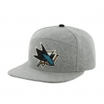 47 Brand San Jose Sharks pet grijs one size