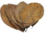 CeramicNature bladeren Jack plantaardig bruin 20 stuks