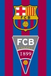 FC Barcelona handdoekje vlag en logo 40 x 60 cm blauw/rood